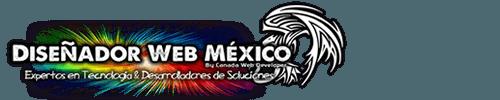 Diseño web y diseño de paginas web, desarrollo de tiendas virtuales, administrador de contenidos WordPress y posicionamiento web en Mexico DF.